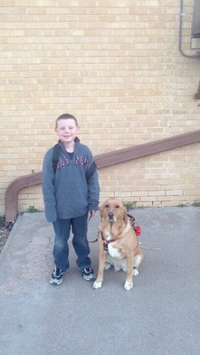 A young boy stands in front of a brick wall. He is blonde and smiling at the camera. He is wearing a grey sweatshirt, jeans, and sneakers. Next to him is a light colored dog that is sitting down. It is wearing a red harness.