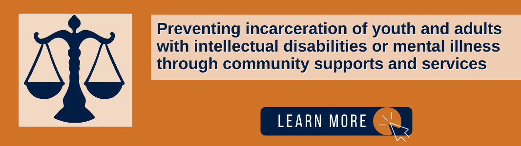 """Background is an orange rectangle. On the right is a lighter orange square with a navy blue graphic of the scales of justice. On the left is a light orange rectangle with navy blue text reading: """"Preventing incarceration of youth and adults with intellectual disabilities or mental illness through community supports and services."""" Under the text is a navy blue rectangle with white text reading """"LEARN MORE"""" and a white computer mouse icon in an orange circle."""